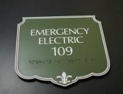 Photopolymer Emergency Electric 109