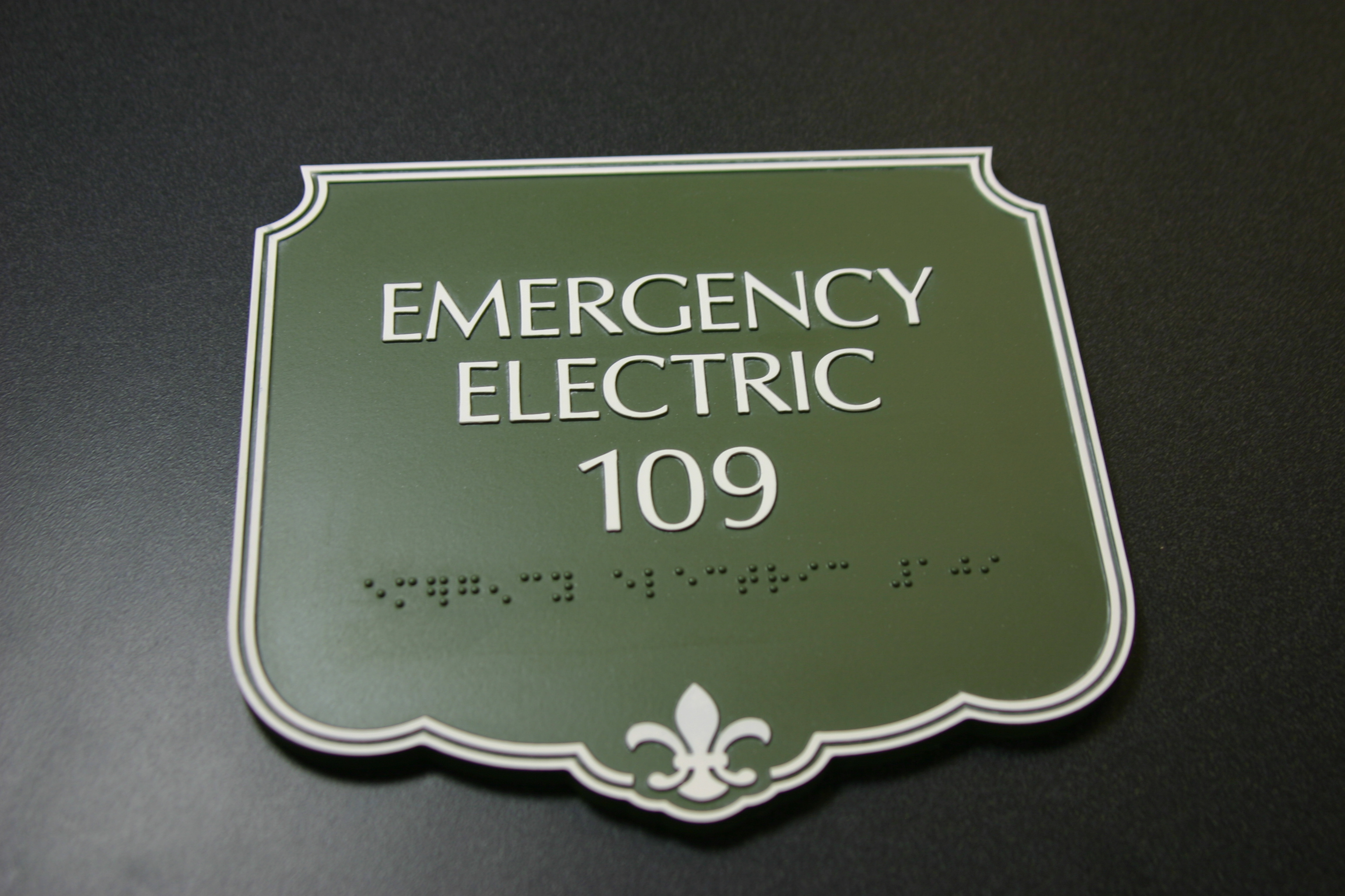 Photopolymer sign with raised border, text and braille. Surface applied paint.